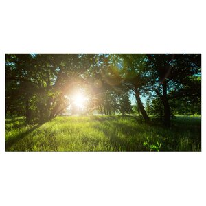 'Sunny Day in Green Forest Meadow' Photographic Print on Wrapped Canvas by Design Art