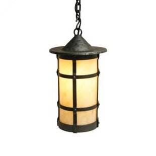 Great choice San Carlos 1-Light Outdoor Pendant By Steel Partners