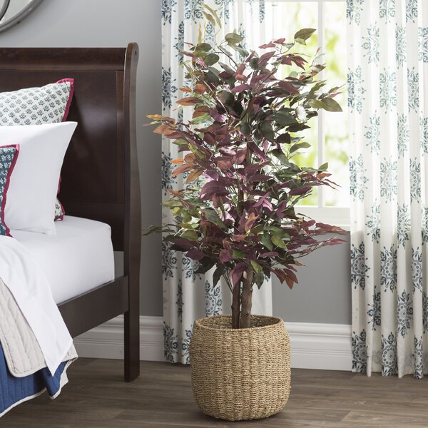 Polyester Blend Bush Tree in Round Pot by Alcott Hill