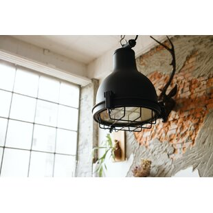 Best Review Castlemaine 1-light Outdoor Pendant By Cocoweb