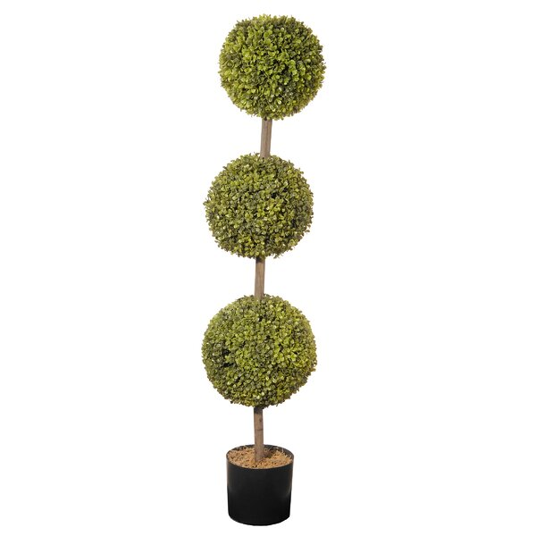 Ball Floor Boxwood Topiary in Pot by August Grove