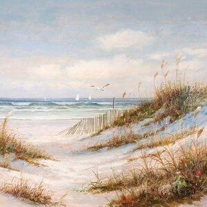 'Sea Breeze' Framed Painting Print on Wrapped Canvas by Beachcrest Home