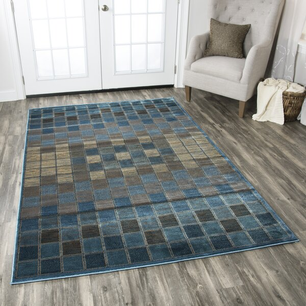 Blue/Grey Area Rug by The Conestoga Trading Co.