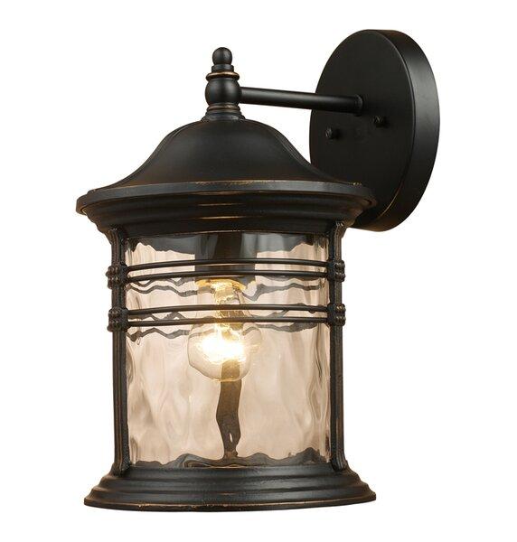 Heimbach 1-Light Outdoor Wall Lantern by Alcott Hill
