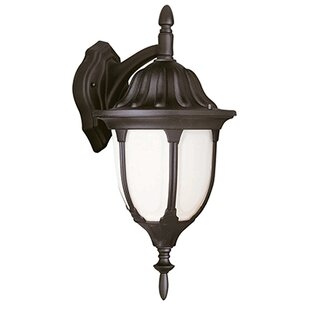 Tucker 1-Light Outdoor Wall Lantern By Charlton Home Outdoor Lighting