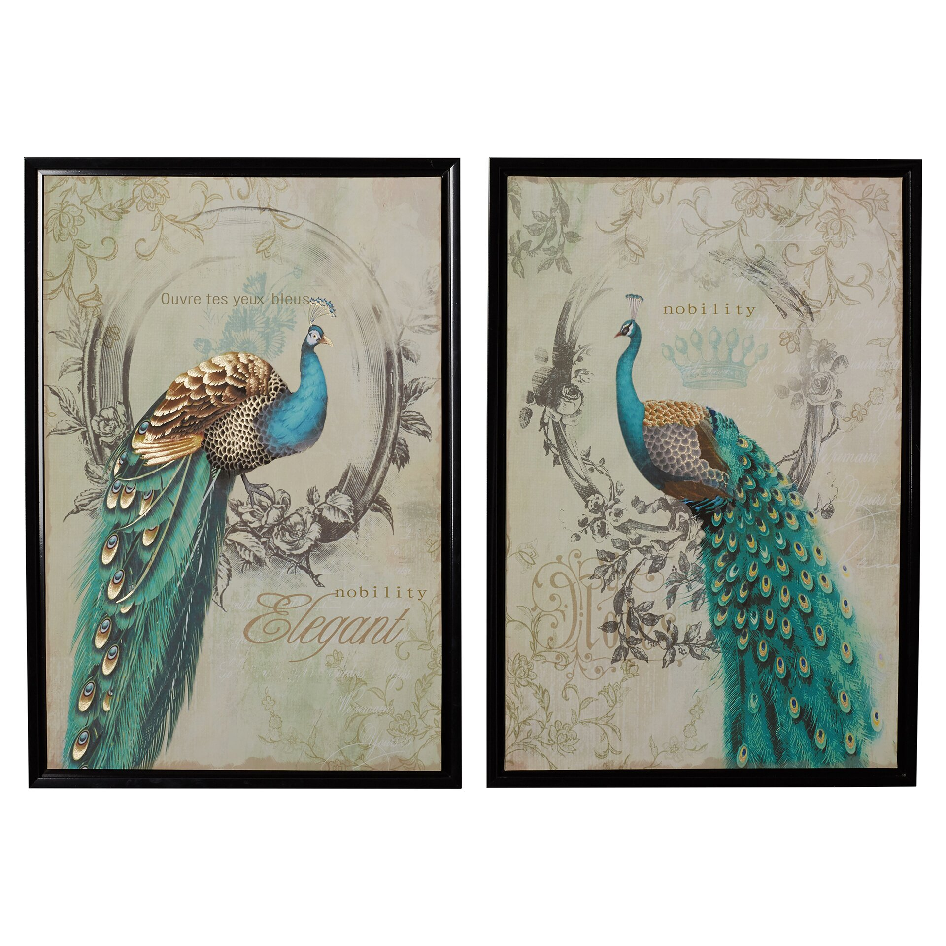 Peacock 2 Piece Framed Graphic Art Set