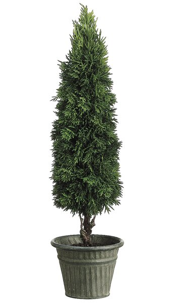 Tabitha Cedar Topiary in Pot by Tori Home