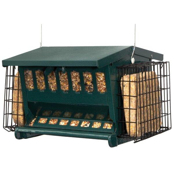 Seed N More Suet Bird Feeder by Akerue Industries
