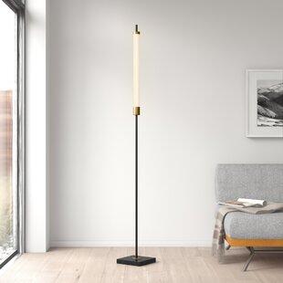 """Ginger 72"""" LED Novelty Floor Lamp"""