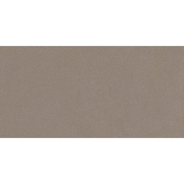 Direction 12 x 24 Porcelain Tile in Polished Gray by Emser Tile