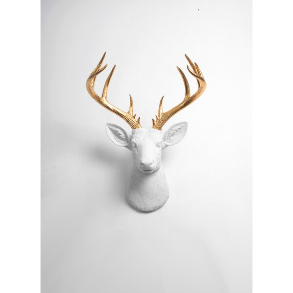 Modern Deer Head Wall Decor by Foundry Select