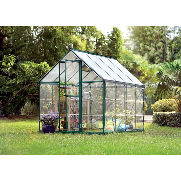 Shearson 6 Ft. W x 8 Ft. D Greenhouse by Darby Home Co
