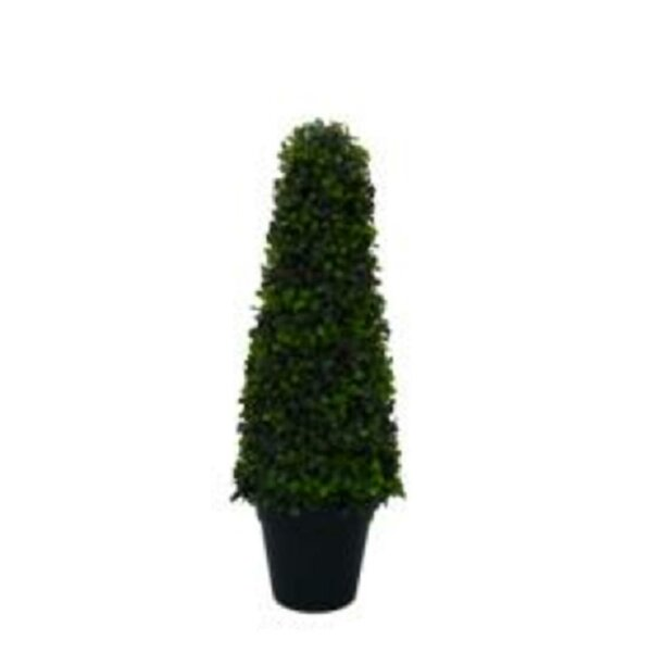 Shrub Decorative 25 Two-Toned Conical Shaped Door Boxwood Topiary in Pot by The Holiday Aisle