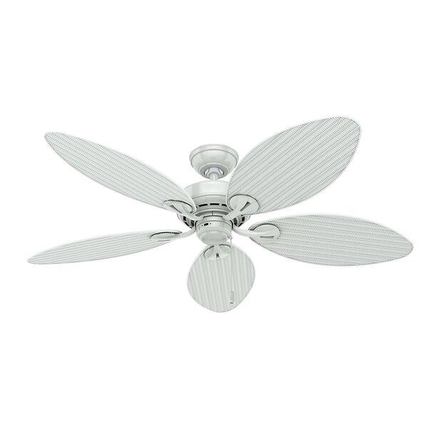 54 Key Biscayne 5-Blade Ceiling Fan by Hunter Fan