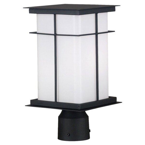Mesa Outdoor 1-Light Lantern Head by Wildon Home ®