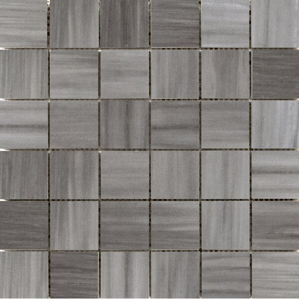 Latitude 2 x 2 Porcelain Mosaic Tile in Graphite by Emser Tile