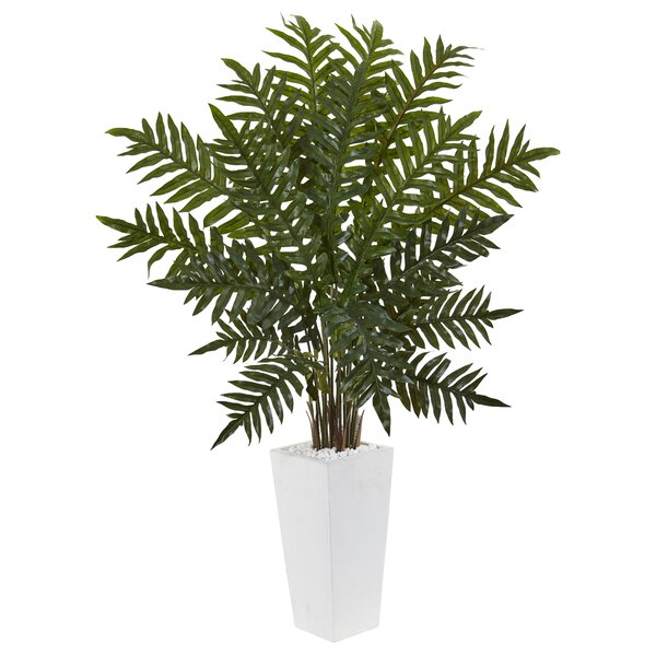 Artificial Plastic Evergreen Floor Foliage Plant in Planter by Bayou Breeze