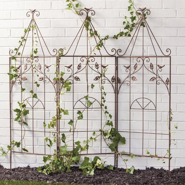 Bird Cage Iron Folding Trellis by Evergreen Enterprises, Inc