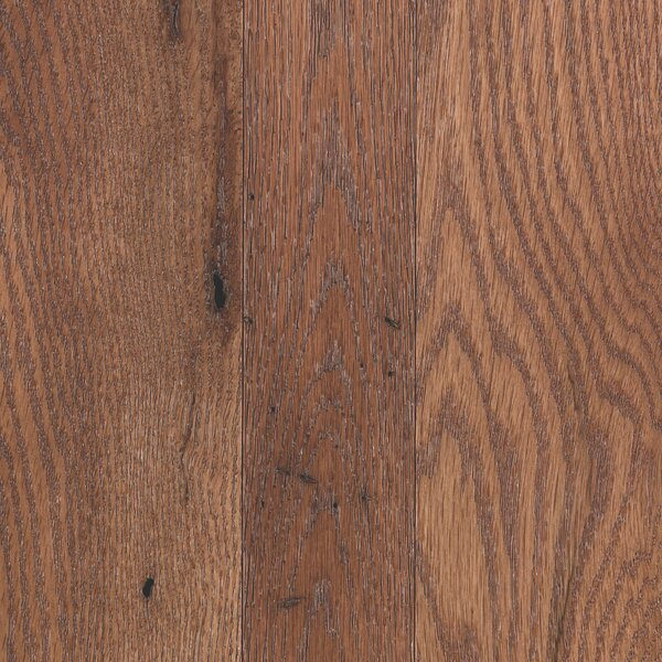 Charmaine 3-1/4 Solid Oak Hardwood Flooring in Matte Glossy Sunkissed by Mohawk Flooring