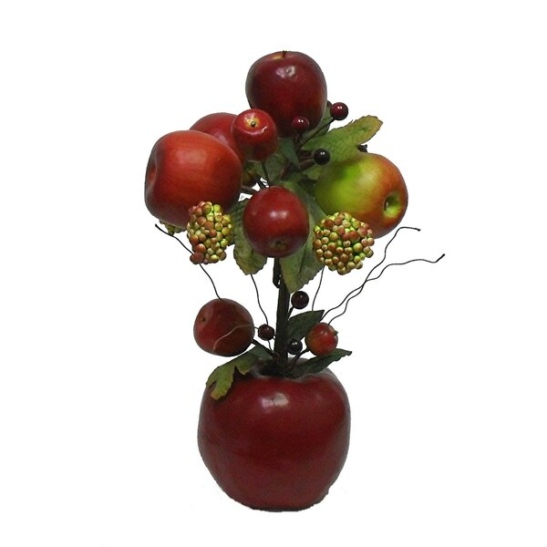 Teton Apple Desk Top Topiary in Pot by August Grove