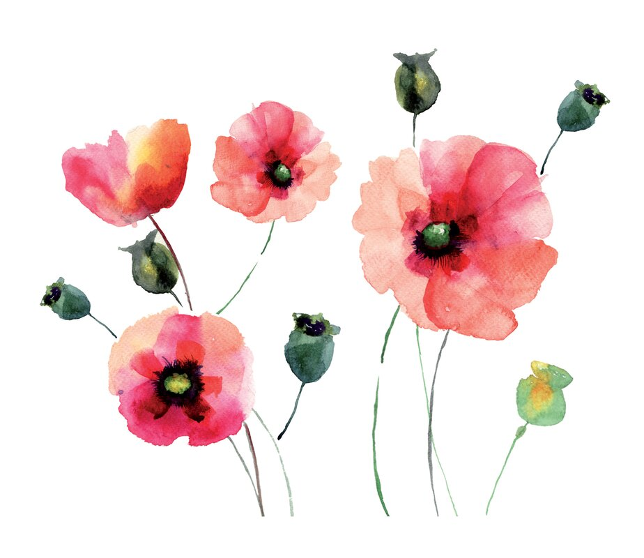 Wallpops home decor line watercolor poppies wall decal for How to start a home decor line