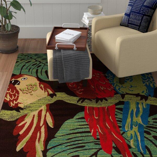 Vasser Parrots Brown/Green Indoor/Outdoor Area Rug by Winston Porter