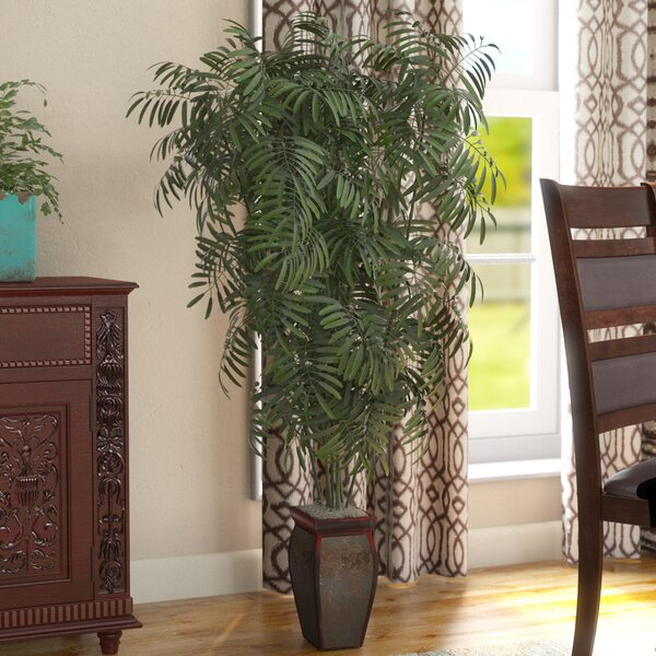 Mini Bamboo Palm Floor Plant in Decorative Vase by World Menagerie