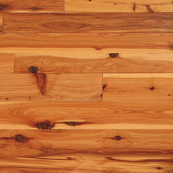 3-1/4 Solid Cypress Hardwood Flooring in Natural by Easoon USA