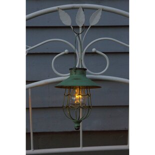 Deals Gratz Vintage Edison Lantern Head By Gracie Oaks
