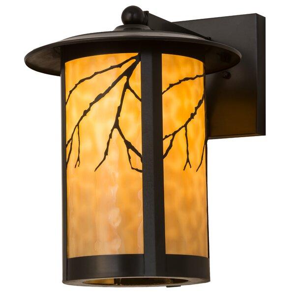 Borodino Outdoor Wall Lantern by Loon Peak