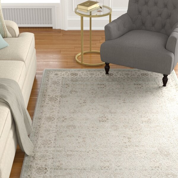 Setser Silver/Cream Area Rug by Darby Home Co