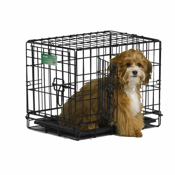 Dog Double Door Pet Crate by Midwest Homes For Pets