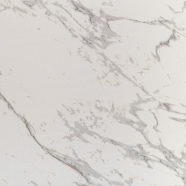 24 x 24 Porcelain Field Tile in Carrara by MSI