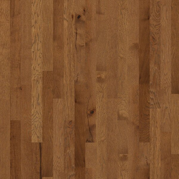 Cambridge Hickory 3-1/4 Solid Hickory Hardwood Flooring in Caldwell by Shaw Floors