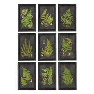 Fern Botanical 9 Piece Framed Graphic Art Set by Laurel Foundry Modern Farmhouse