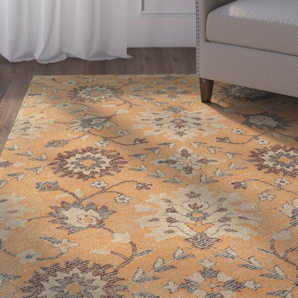 Fairhaven Handmade Orange Indoor/Outdoor Area Rug by Charlton Home