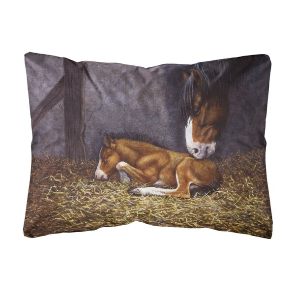 Sicard Horse and Her Foal Fabric Indoor/Outdoor Throw Pillow by Winston Porter