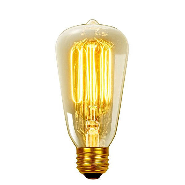 Vintage Edison (2700K) S60 Squirrel Cage Incandescent Filament Light Bulb by Innova