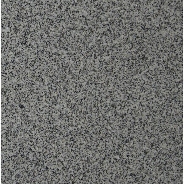 12 x 12 Granite Field Tile in Bianco Catalina by MSI