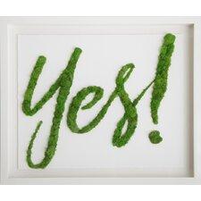 Moss Yes! Live Art Wall Décor