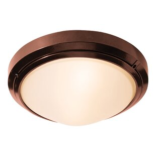 Look for Decoteau 1-Light Outdoor Flush Mount By Ivy Bronx