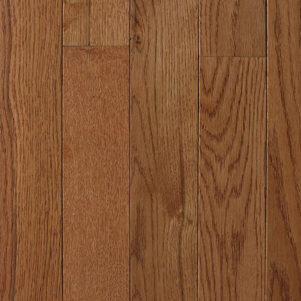 Varnazza 2-1/4 Solid Oak Hardwood Flooring in Gunstock by Branton Flooring Collection