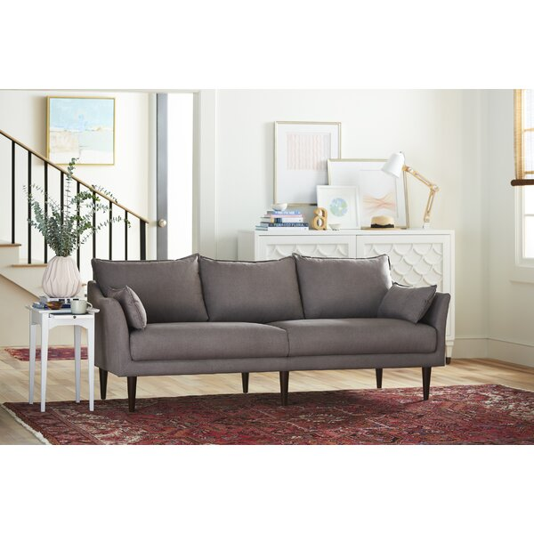 Best Reviews Spiffy Sofa by YoungHouseLove by YoungHouseLove