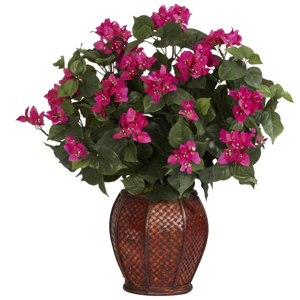 Bougainvillea Silk Desk Top Centerpiece in Decorative Vase by Nearly Natural