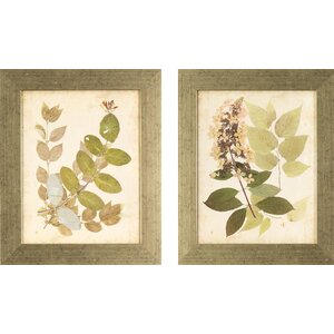 'Nature' 2 Piece Framed Graphic Art Set by Lark Manor