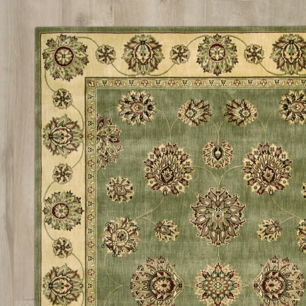 Barnum Green/Beige Area Rug by Astoria Grand