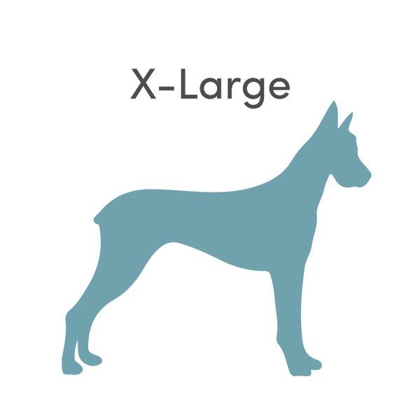 Jax Bones Extra Large Dog Beds Youll Love Wayfair