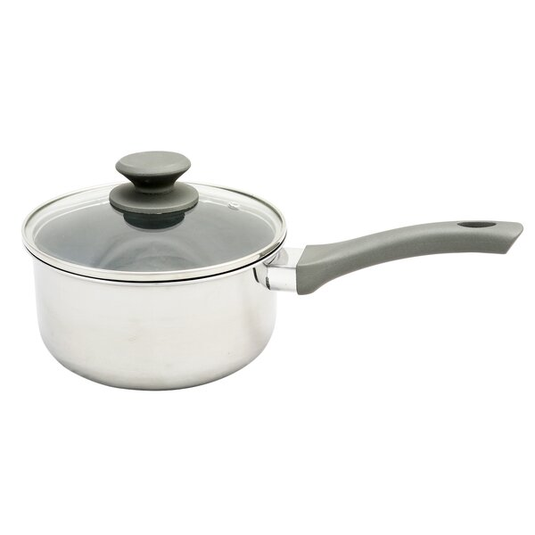 Lexie 2.5 qt. Stainless Steel Sauce Pan with Lid by Symple Stuff