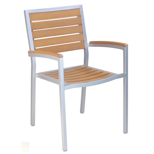 Stacking Patio Dining Chair with Cushion (Set of 2) by Adriano