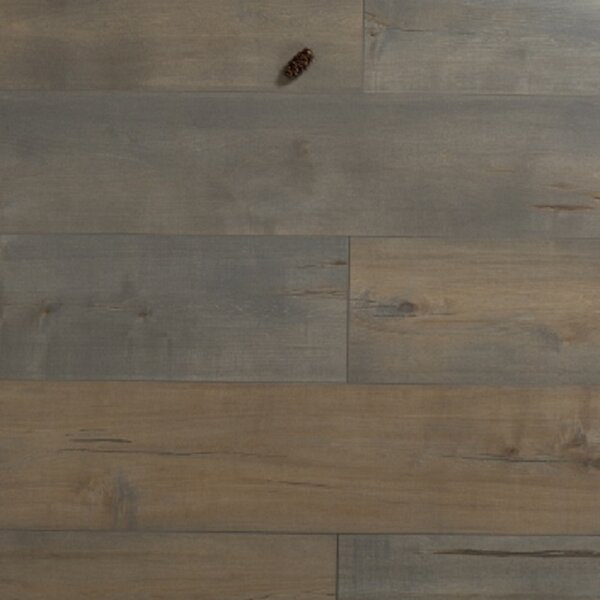 Cumulus 12 x 48 x 12mm Pine Laminate Flooring in Embossed by Islander Flooring